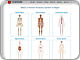 www.innerbody.com/htm/body.html